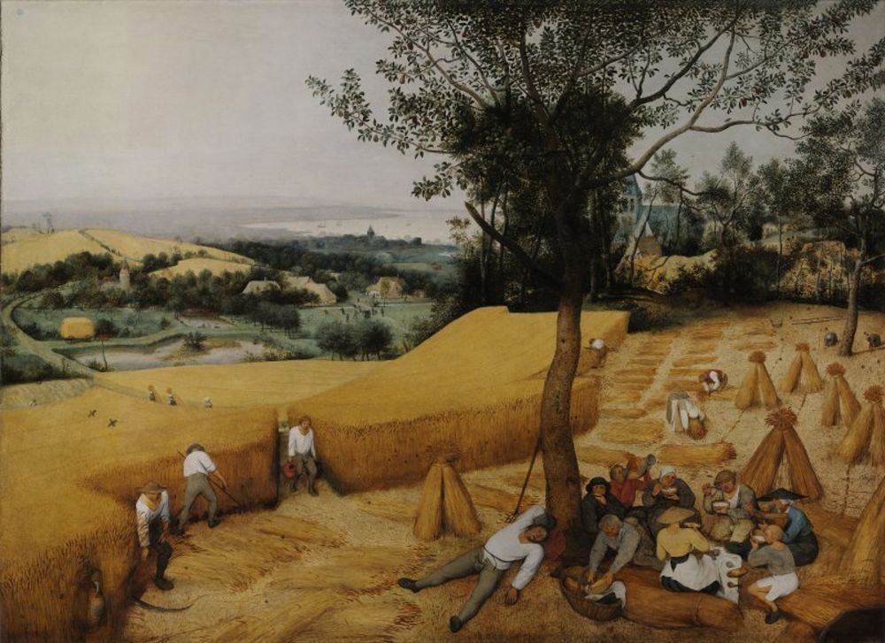 Pieter Bruegel the Elder- The Harvesters.jpg